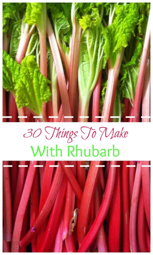 30 Things to Make With Rhubarb