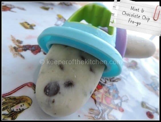 Mint and choc chip frozen yoghurt